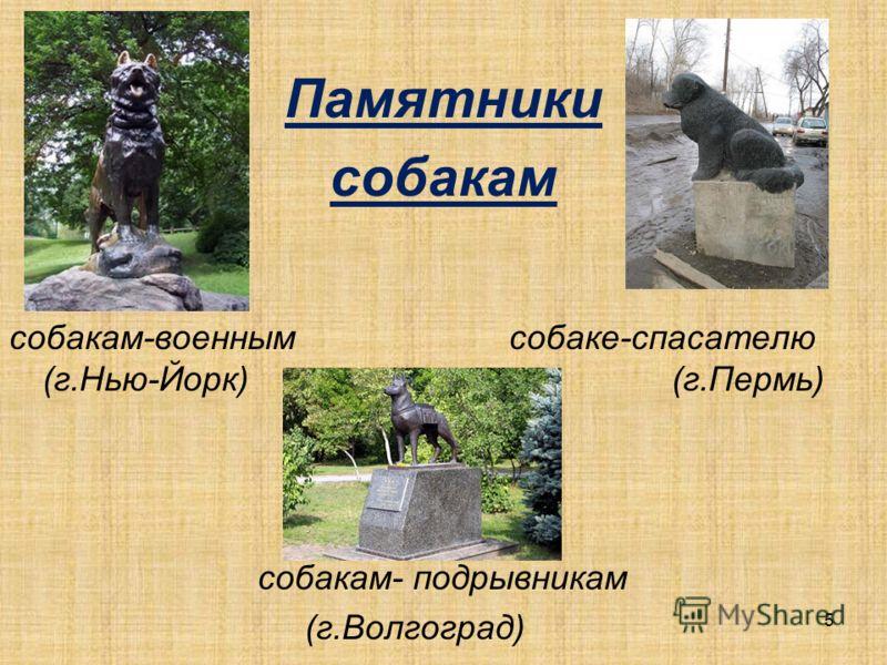 Памятники собакам собакам военным