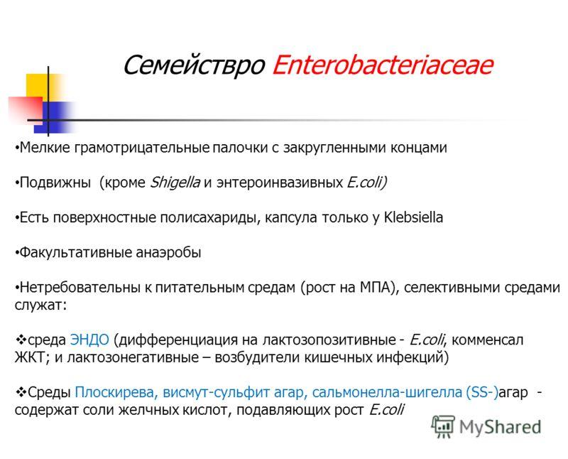 Семействро Enterobacteriaceae Мелкие грамотрицательные палочки с закругленными концами Подвижны (кроме Shigella и энтероинвазивных E.coli) Есть поверхностные полисахариды, капсула только у Klebsiella Факультативные анаэробы Нетребовательны к питатель