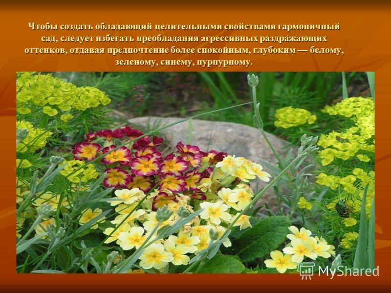 Чтобы создать обладающий целительными свойствами гармоничный сад, следует избегать преобладания агрессивных раздражающих оттенков, отдавая предпочтение более спокойным, глубоким белому, зеленому, синему, пурпурному.