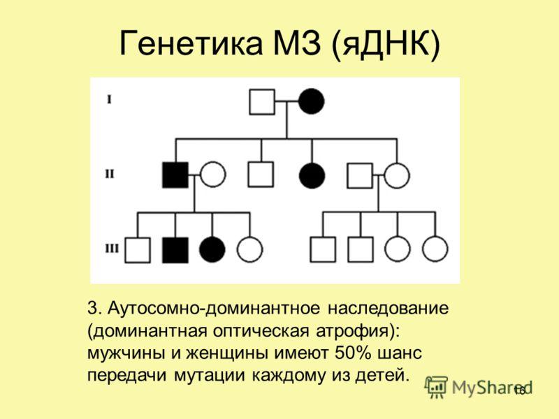 Генетика МЗ (яДНК) 3. Аутосомно-доминантное наследование (доминантная оптическая атрофия): мужчины и женщины имеют 50% шанс передачи мутации каждому из детей. 16