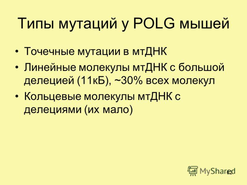 Типы мутаций у POLG мышей Точечные мутации в мтДНК Линейные молекулы мтДНК с большой делецией (11кБ), ~30% всех молекул Кольцевые молекулы мтДНК с делециями (их мало) 62