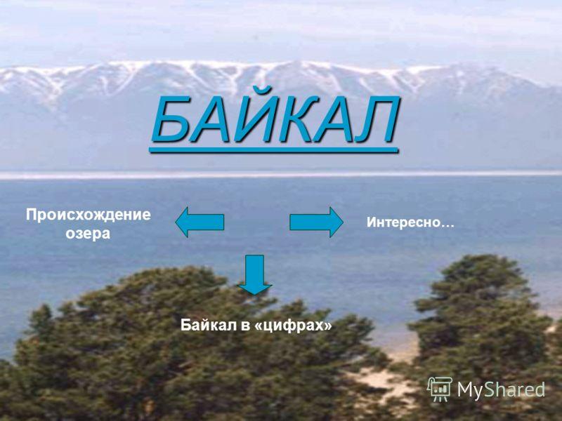 БАЙКАЛ Происхождение озера Байкал в «цифрах» Интересно…