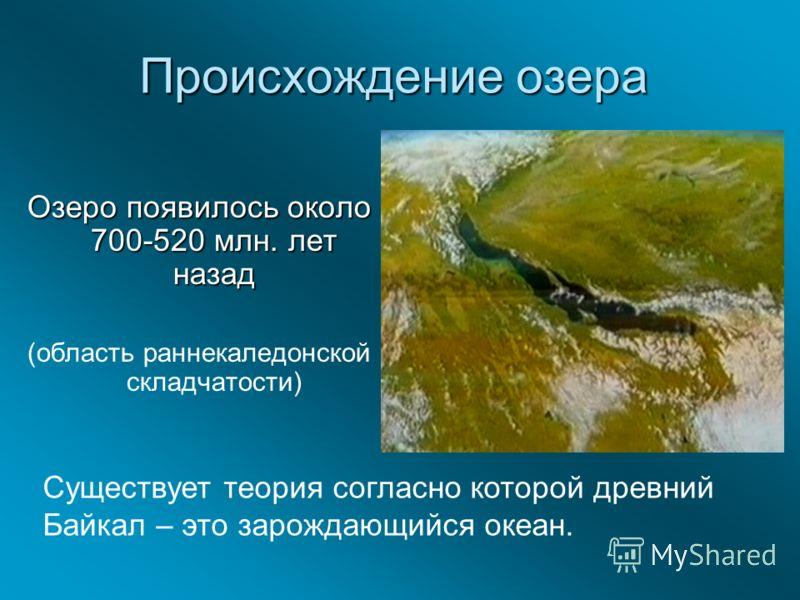 Происхождение озера Озеро появилось около 700-520 млн. лет назад (область раннекаледонской складчатости) Существует теория согласно которой древний Байкал – это зарождающийся океан.