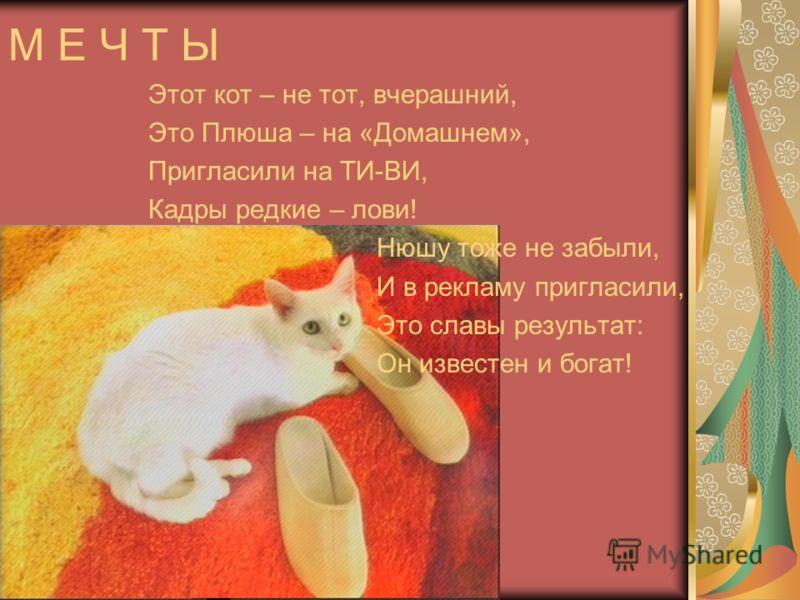 М Е Ч Т Ы Этот кот – не тот, вчерашний, Это Плюша – на «Домашнем», Пригласили на ТИ-ВИ, Кадры редкие – лови! Нюшу тоже не забыли, И в рекламу пригласили, Это славы результат: Он известен и богат!