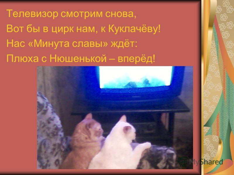 Телевизор смотрим снова, Вот бы в цирк нам, к Куклачёву! Нас «Минута славы» ждёт: Плюха с Нюшенькой – вперёд!