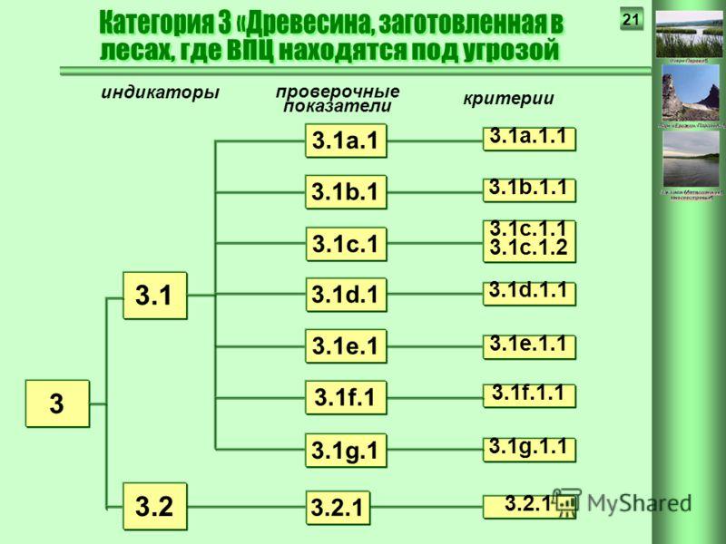 21 3.13.1 индикаторы проверочные показатели критерии 3 3.2 3.1e.1.1 3.2.1 3.1d.1.1 3.1d.1 3.1c.1.1 3.1c.1.2 3.1c.1 3.1g.1.1 3.1a.1.1 3.1b.1.1 3.1e.1 3.1f.1.1 3.1b.1 3.1a.1 3.1f.1 3.1g.1