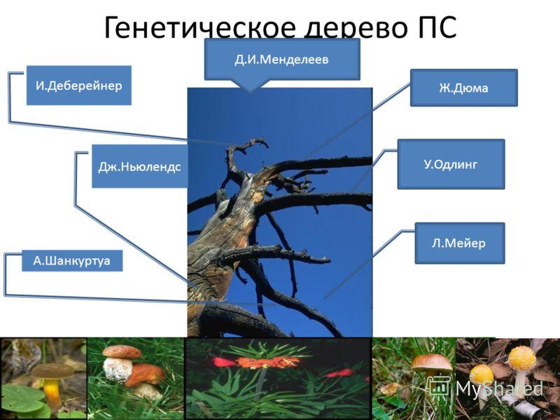 Генетическое дерево ПС У.Одлинг Л.Мейер Дж.Ньюлендс И.Деберейнер Ж.Дюма А.Шанкуртуа Д.И.Менделеев