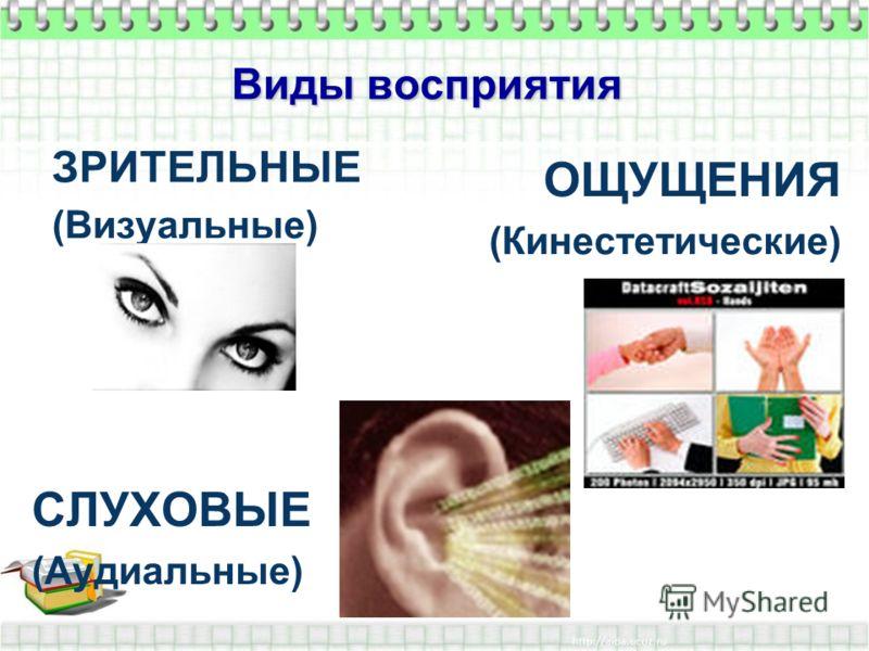 Виды восприятия ЗРИТЕЛЬНЫЕ (Визуальные) СЛУХОВЫЕ (Аудиальные) ОЩУЩЕНИЯ (Кинестетические)