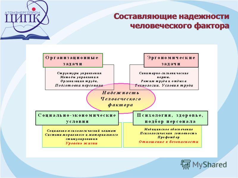 Составляющие надежности человеческого фактора Составляющие надежности человеческого фактора