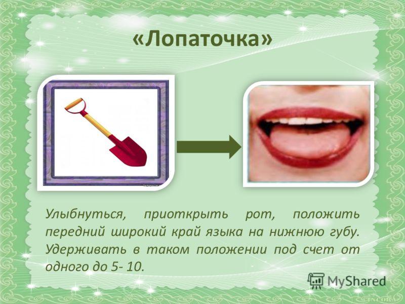 «Лопаточка» Улыбнуться, приоткрыть рот, положить передний широкий край языка на нижнюю губу. Удерживать в таком положении под счет от одного до 5- 10.