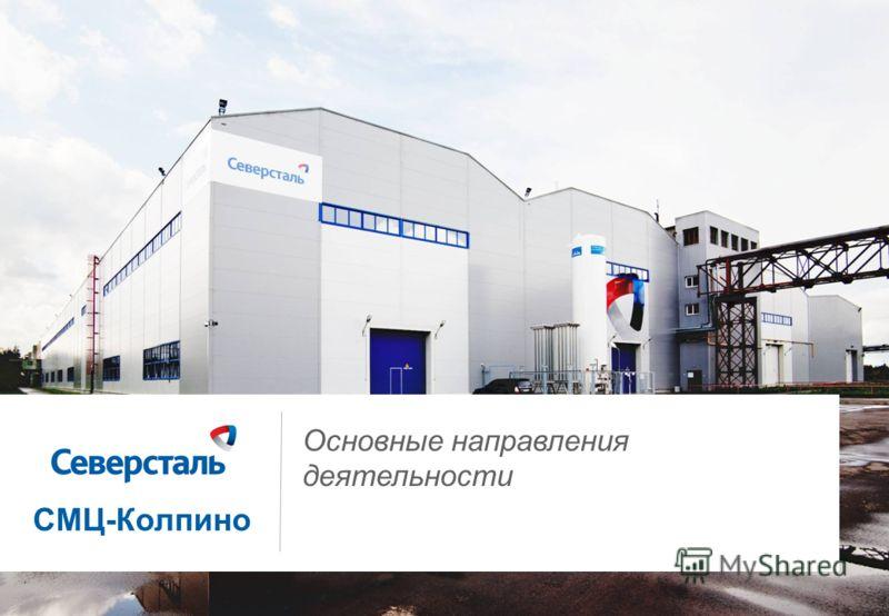 1 Основные направления деятельности СМЦ-Колпино