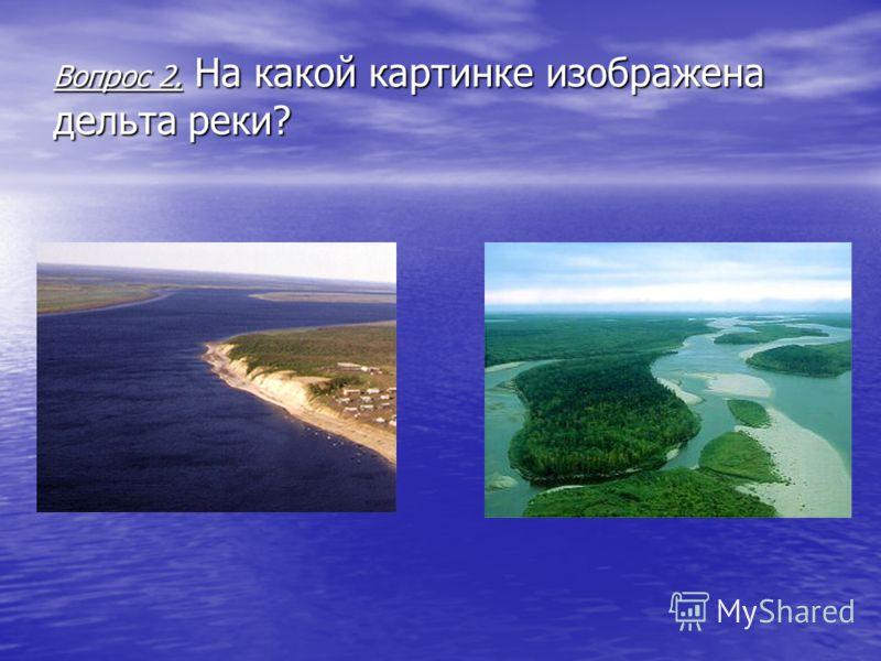 Вопрос 2. На какой картинке изображена дельта реки?