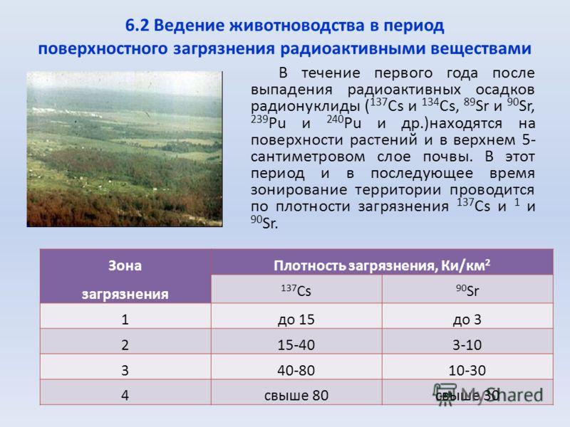 6.2 Ведение животноводства в период поверхностного загрязнения радиоактивными веществами В течение первого года после выпадения радиоактивных осадков радионуклиды ( 137 Cs и 134 Сs, 89 Sr и 90 Sr, 239 Pu и 240 Pu и др.)находятся на поверхности растен