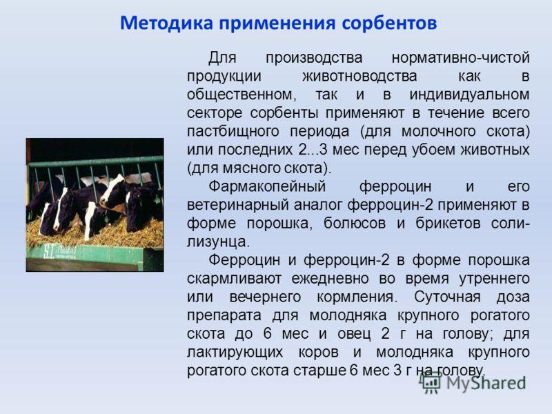 Методика применения сорбентов Для производства нормативно-чистой продукции животноводства как в общественном, так и в индивидуальном секторе сорбенты применяют в течение всего пастбищного периода (для молочного скота) или последних 2...3 мес перед уб