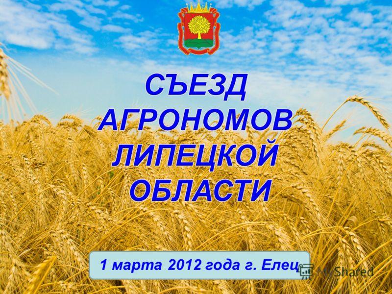 1 марта 2012 года г. Елец