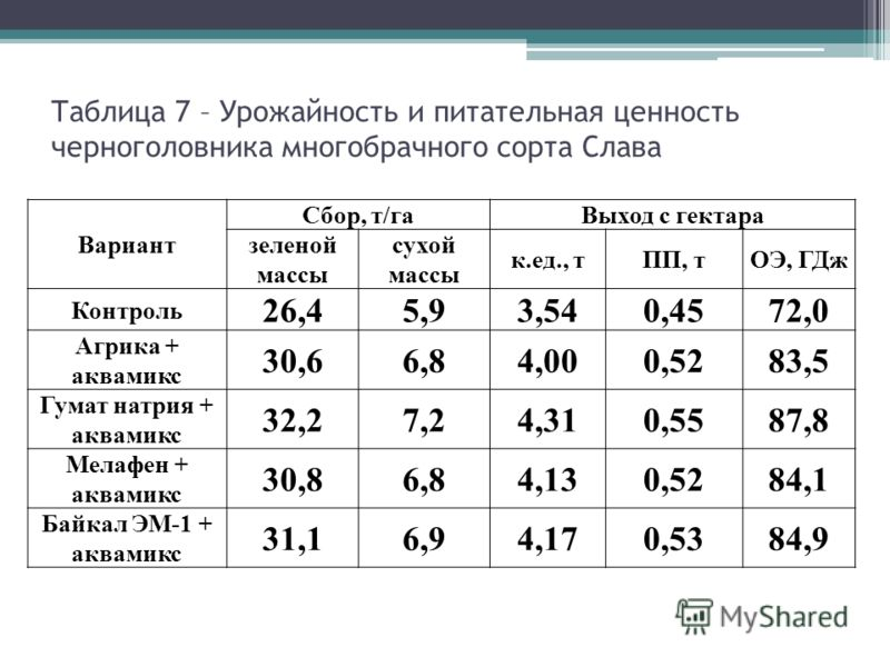 Таблица 7 – Урожайность и питательная ценность черноголовника многобрачного сорта Слава Вариант Сбор, т/гаВыход с гектара зеленой массы сухой массы к.ед., тПП, тОЭ, ГДж Контроль 26,45,93,540,4572,0 Агрика + аквамикс 30,66,84,000,5283,5 Гумат натрия +