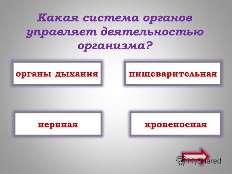 Презентация На Тему Кровь 8 Класс По Биологии