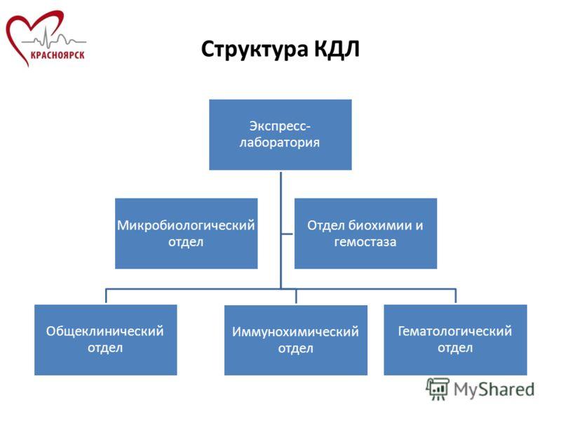 Структура КДЛ Микробиологический отдел Экспресс- лаборатория Гематологический отдел Иммунохимический отдел Общеклинический отдел Отдел биохимии и гемостаза