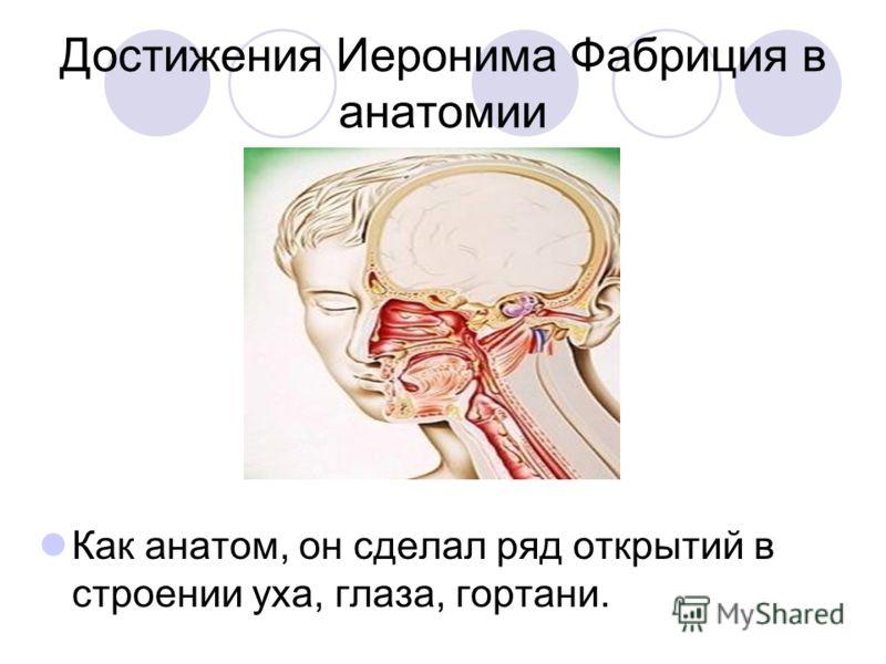 Достижения Иеронима Фабриция в анатомии Как анатом, он сделал ряд открытий в строении уха, глаза, гортани.