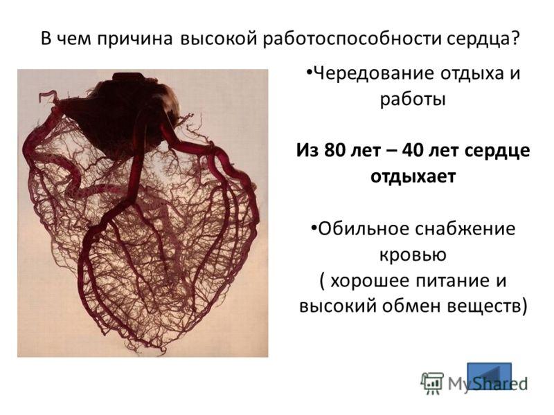 В чем причина высокой работоспособности сердца? Чередование отдыха и работы Из 80 лет – 40 лет сердце отдыхает Обильное снабжение кровью ( хорошее питание и высокий обмен веществ)