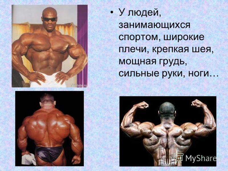 У людей, занимающихся спортом, широкие плечи, крепкая шея, мощная грудь, сильные руки, ноги…