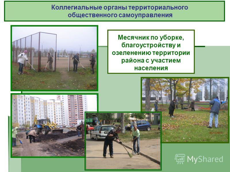 Месячник по уборке, благоустройству и озеленению территории района с участием населения Коллегиальные органы территориального общественного самоуправления