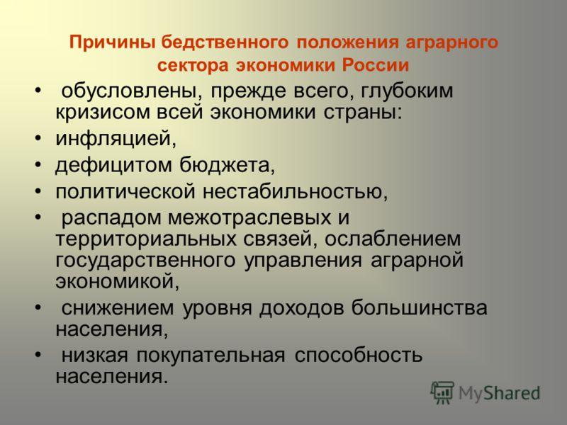 Причины бедственного положения аграрного сектора экономики России обусловлены, прежде всего, глубоким кризисом всей экономики страны: инфляцией, дефицитом бюджета, политической нестабильностью, распадом межотраслевых и территориальных связей, ослабле
