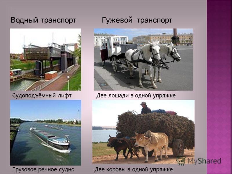 Судоподъёмный лифт Грузовое речное судно Водный транспорт Две лошади в одной упряжке Две коровы в одной упряжке Гужевой транспорт