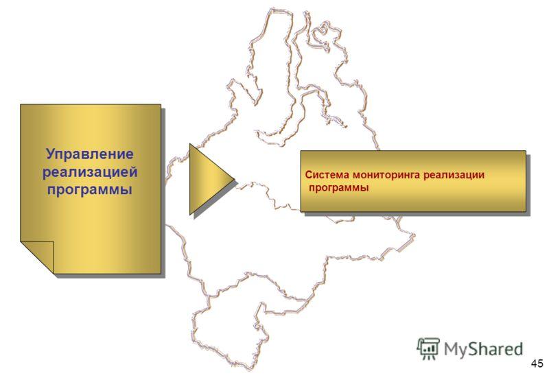 45 Управление реализацией программы Система мониторинга реализации программы Система мониторинга реализации программы