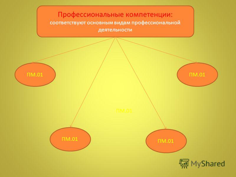 Профессиональные компетенции: соответствуют основным видам профессиональной деятельности ПМ.01