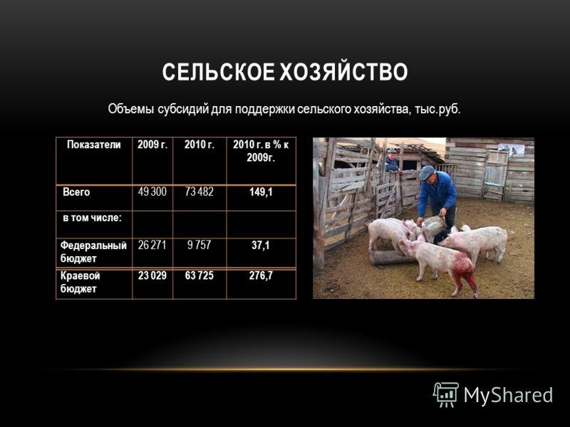 СЕЛЬСКОЕ ХОЗЯЙСТВО Объемы субсидий для поддержки сельского хозяйства, тыс.руб. Показатели 2009 г.2010 г.2010 г. в % к 2009г. Всего 49 30073 482 149,1 в том числе: Федеральный бюджет 26 2719 757 37,1 Краевой бюджет 23 02963 725276,7