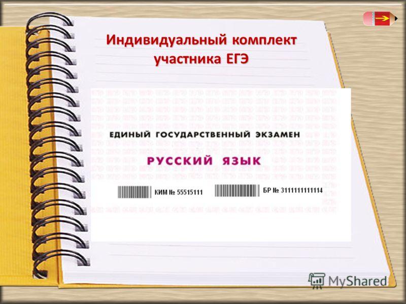 Индивидуальный комплект участника ЕГЭ