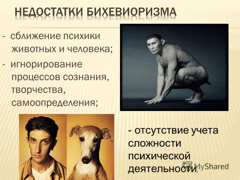 - сближение психики животных и человека; - игнорирование процессов сознания, творчества, самоопределения; - отсутствие учета сложности психической деятельности ;