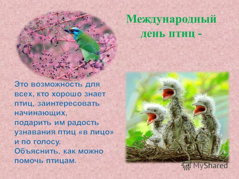 Международный день птиц -