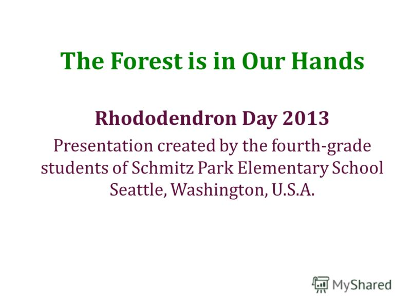The Forest is in Our Hands Rhododendron Day 2013 Presentation created by the fourth-grade students of Schmitz Park Elementary School Seattle, Washington, U.S.A.