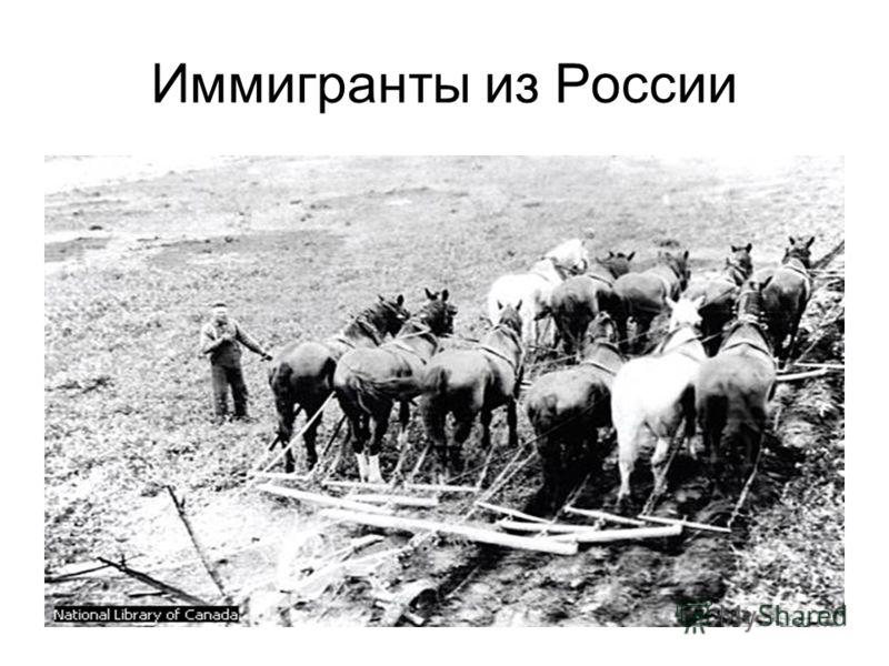 Иммигранты из России