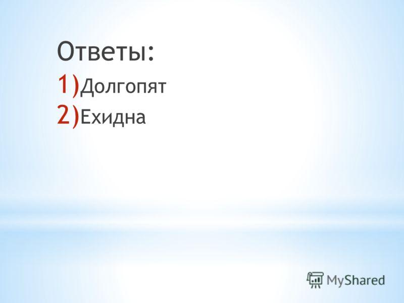 Ответы: 1) Долгопят 2) Ехидна