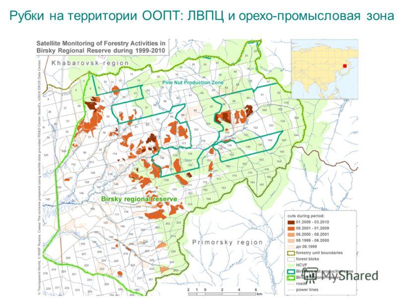 Рубки на территории ООПТ: ЛВПЦ и орехо-промысловая зона