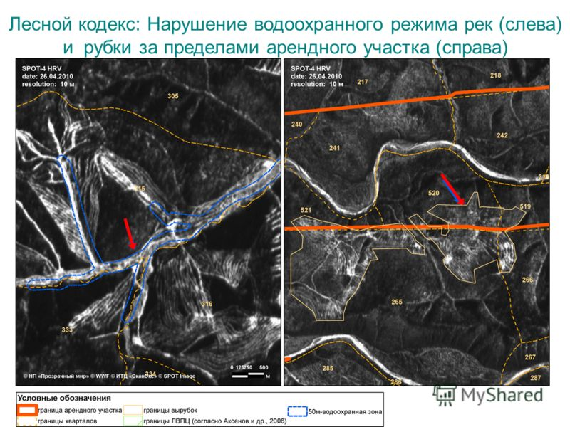 Лесной кодекс: Нарушение водоохранного режима рек (слева) и рубки за пределами арендного участка (справа)