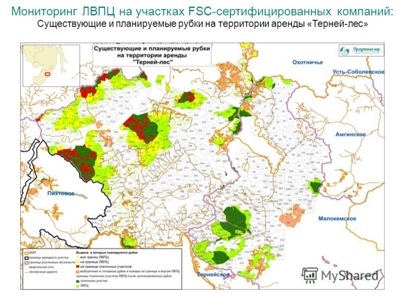 Мониторинг ЛВПЦ на участках FSC-сертифицированных компаний: Существующие и планируемые рубки на территории аренды «Терней-лес»