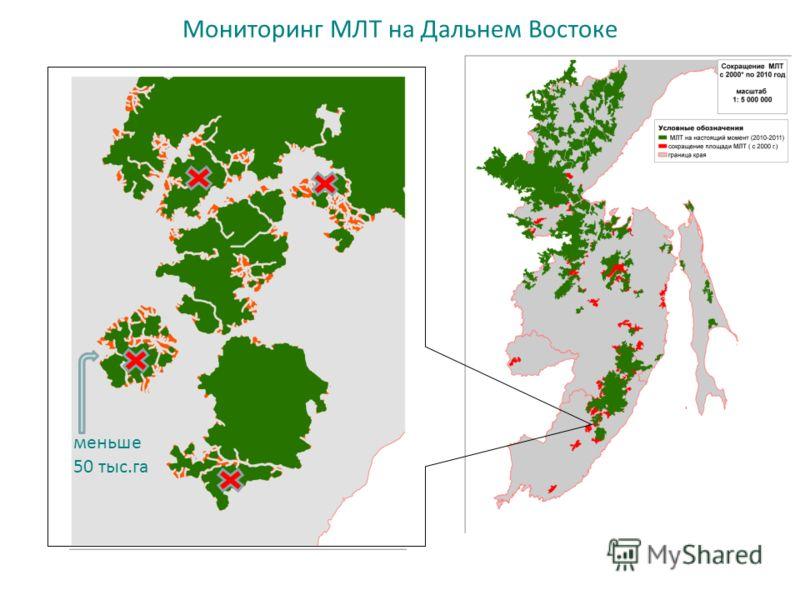 Мониторинг МЛТ на Дальнем Востоке меньше 50 тыс.га