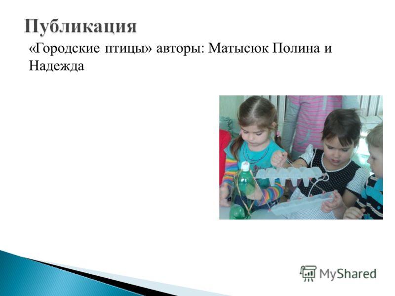 «Городские птицы» авторы: Матысюк Полина и Надежда