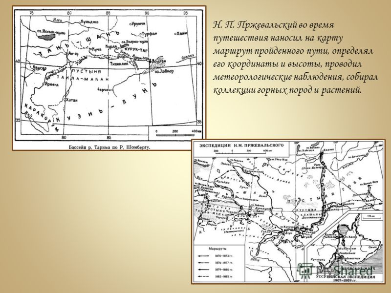 Н. П. Пржевальский во время путешествия наносил на карту маршрут пройденного пути, определял его координаты и высоты, проводил метеорологические наблюдения, собирал коллекции горных пород и растений.