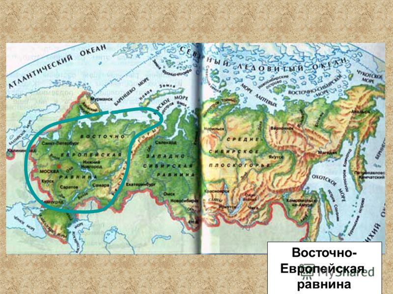 Восточно- Европейская равнина