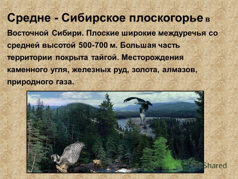 Средне - Сибирское плоскогорье в Восточной Сибири. Плоские широкие междуречья со средней высотой 500-700 м. Большая часть территории покрыта тайгой. Месторождения каменного угля, железных руд, золота, алмазов, природного газа.