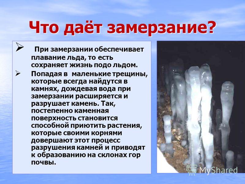 Что даёт замерзание? Что даёт замерзание? При замерзании обеспечивает плавание льда, то есть сохраняет жизнь подо льдом. При замерзании обеспечивает плавание льда, то есть сохраняет жизнь подо льдом. Попадая в маленькие трещины, которые всегда найдут