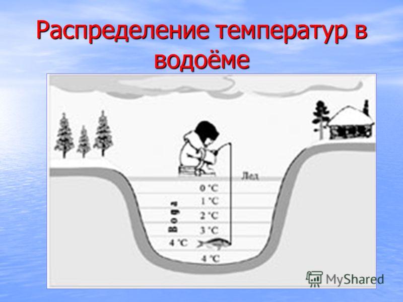 Распределение температур в водоёме
