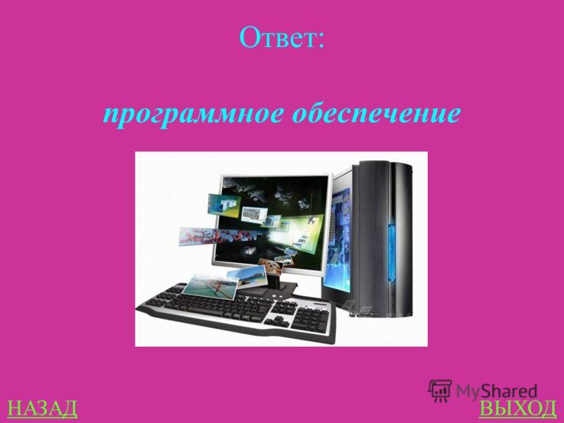 Программы и файлы 100 Чтобы компьютер мог работать, ему необходимы наборы инструкций- программы. Совокупность всех программ составляет …. компьютера.