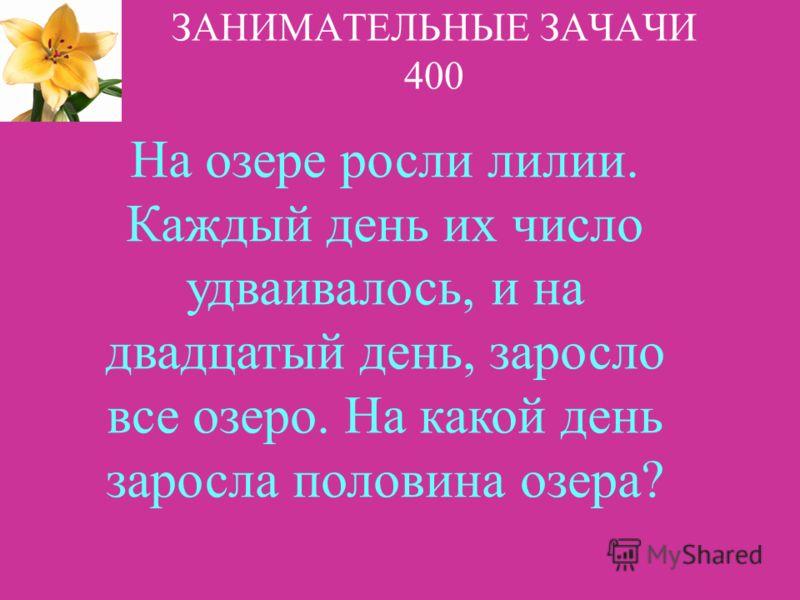 НАЗАДВЫХОД 1 2 3 4 5 Ответ: