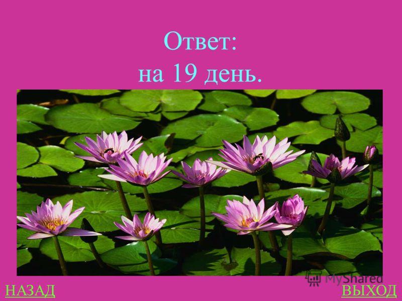 ЗАНИМАТЕЛЬНЫЕ ЗАЧАЧИ 400 На озере росли лилии. Каждый день их число удваивалось, и на двадцатый день, заросло все озеро. На какой день заросла половина озера?